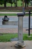 Отпразднуйте воду Стоковое фото RF