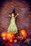Отпразднуйте хеллоуин Стоковые Изображения RF