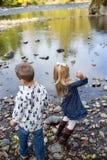Отпрыски бросая утесы в реке совместно Стоковое Изображение