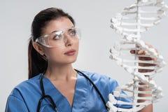Отражательный женский доктор изучая структуру дна Стоковая Фотография