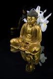 отражать Будды стоковое фото