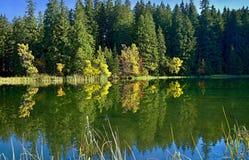 Отражать на уровне воды Vrbicke Тарна в долине Demanovska в Словакии Стоковая Фотография RF