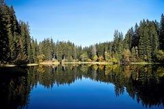 Отражать на уровне воды Vrbicke Тарна в долине Demanovska в Словакии Стоковые Изображения RF