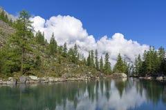 Отражение берега озера в водообильной поверхности стоковая фотография rf