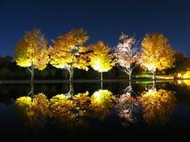 отражение вечера Стоковое Изображение