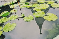 отражение виска Стоковое Изображение RF