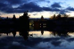 Отражение восхода солнца гусыни Стоковые Изображения RF