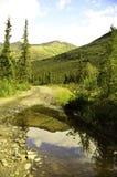 Отражение воды Стоковые Фото