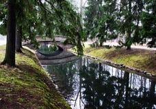 Отражение в воде Стоковые Изображения