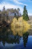 Отражение в озере Стоковые Изображения RF