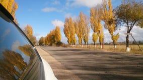 Отражение в окне автомобиля Стоковое фото RF