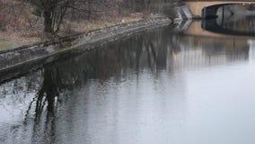 Отражение в реке акции видеоматериалы