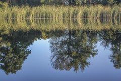 Отражение в реке Стоковая Фотография RF