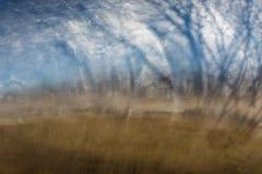 Отражение гавани Стоковое фото RF
