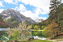 Отражение горы в озере Стоковые Фото