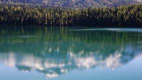 Отражение горы на озере - деревья - высокогорный сценарий акции видеоматериалы