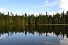 Отражение горы утки Стоковые Изображения RF