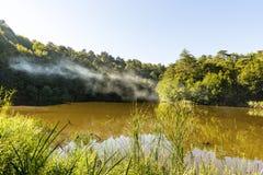 Отражение дерева на озере на горе Стоковое Фото