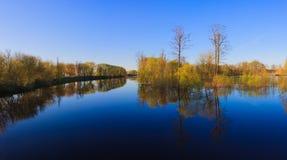 Отражение деревьев в реке на зоре Стоковые Фотографии RF