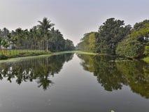 Отражение деревьев появляется на воду стоковое изображение rf