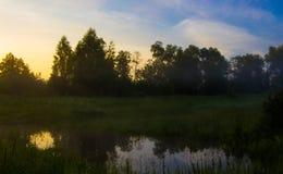 Отражение деревьев в воде на восходе солнца в тумане Стоковое фото RF