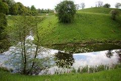 Отражение заводов и структур в воде Стоковые Фото