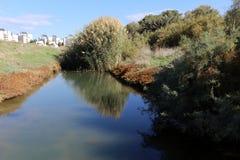 Отражение заводов и структур в воде Стоковое Изображение