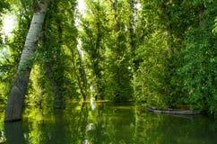 Отражение затопленного дерева в озере и шлюпке Концепция безмолвия Стоковые Изображения RF