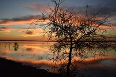 Отражение захода солнца на парке штата холма кедра в Техасе стоковое фото