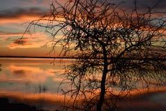 Отражение захода солнца на парке штата холма кедра в Техасе стоковая фотография rf