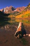отражение колоколов осени maroon Стоковые Фото