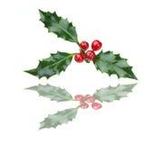 отражение красного цвета падуба рождества ягод Стоковые Фото