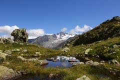 "Отражение ледника d ""Argentiere в des Cheserys Lac стоковое фото"