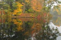 отражение листва осени Стоковые Фото