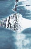 Отражение мира Стоковые Изображения RF