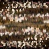 Отражение на воде Стоковое Изображение