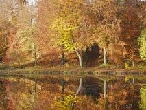 Отражение на озере в осени в Дании стоковое изображение rf