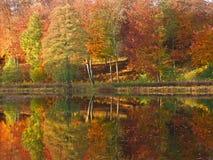 Отражение на озере в осени в Дании стоковые фото