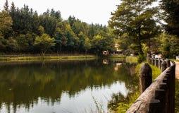 Отражение на озере, Калабрии, Италии Стоковые Фотографии RF
