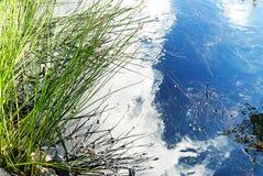 Отражение неба на воде стоковые изображения rf