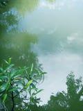 отражение небо в wather Стоковые Фотографии RF