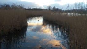 Отражение облаков в воде Стоковая Фотография