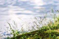 Отражение облаков в озере Стоковое Изображение RF