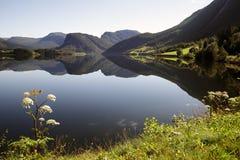 отражение озера все еще Стоковые Фотографии RF
