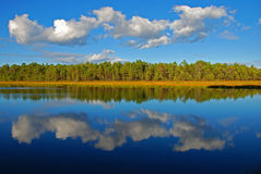 отражение озера все еще Стоковые Фото