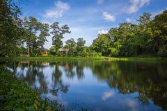 Отражение озера - голубое небо Стоковые Фото