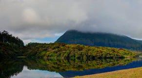 Отражение озера Грегори в Nuwara Eliya в тумане, Шри-Ланке Стоковые Фотографии RF