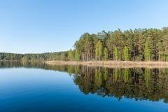 Отражение озера и леса на воде Стоковая Фотография