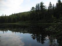 Отражение озера Wapizagonke Стоковые Изображения RF