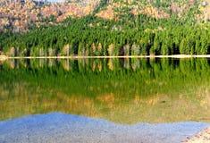 Отражение осени, на озере стоковые изображения rf